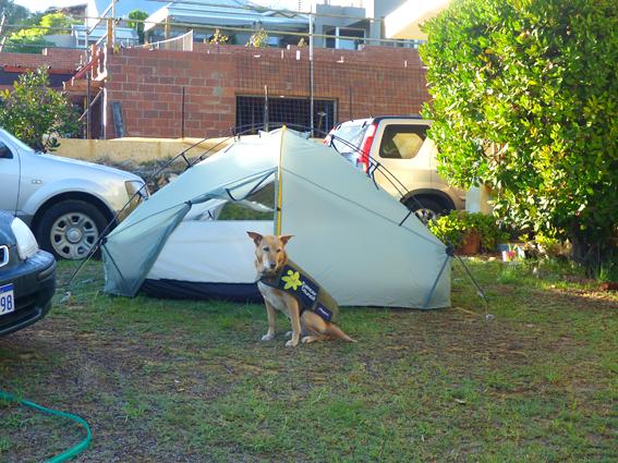Trigg campsite