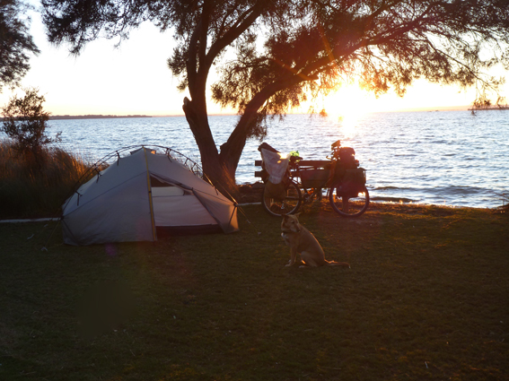 Sunrise at our camp on the banks of the Harvey Estuary, Dawesville, WA