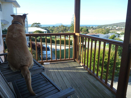 Check out the view of Middleton Bay from our hosts verandah. Albany, WA
