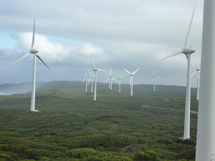 Wind farm on the coast at Albany, WA