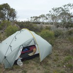 41 Roadside campsite, north of Boxwood Hill, WA
